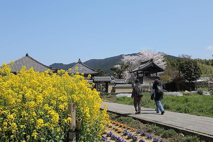 飛鳥寺 花会式4