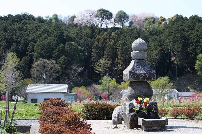 飛鳥寺 花会式6
