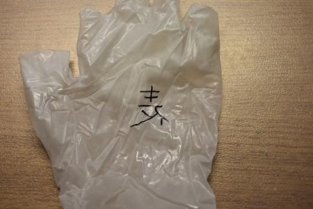 exp_tebukuro_AxB1.jpg