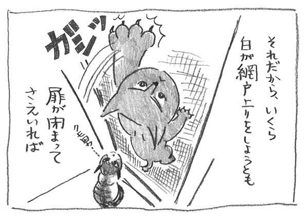 2-網戸登り
