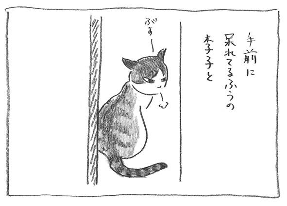 11-呆れる李子