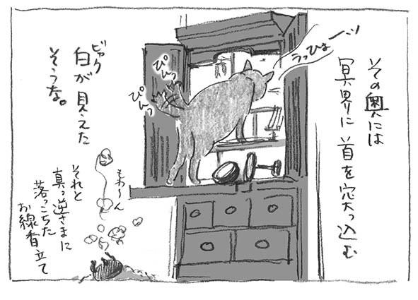 12-仏壇白