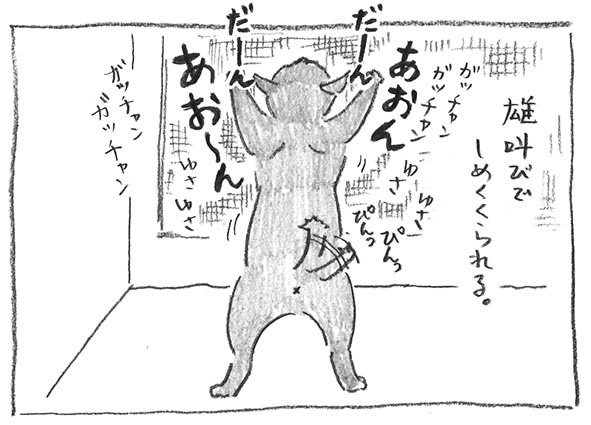 5-雄叫び