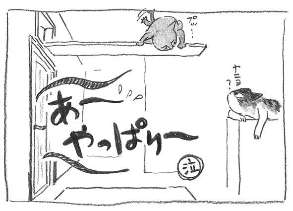 12-見合わせ
