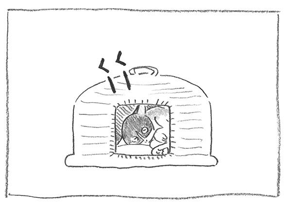 1-くーくー0312