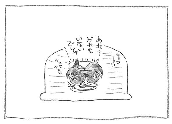 3-キョロキョロ0312