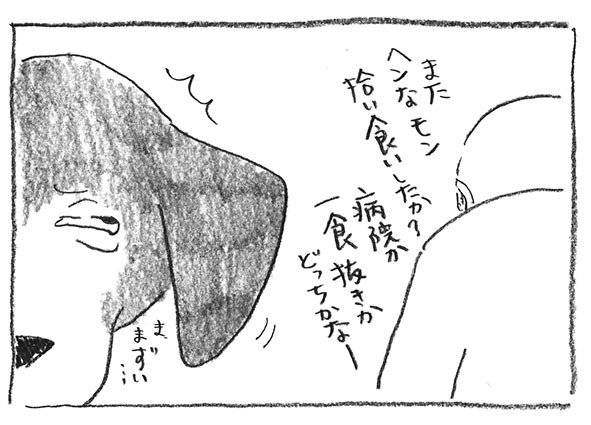 5-0315拾い食い
