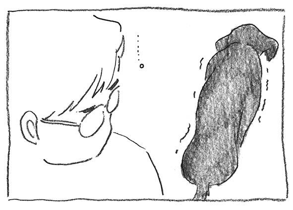 8-0315忍笑い