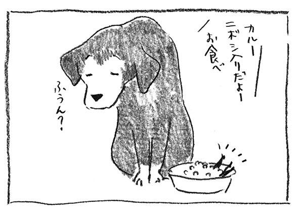 9-0315お食べ