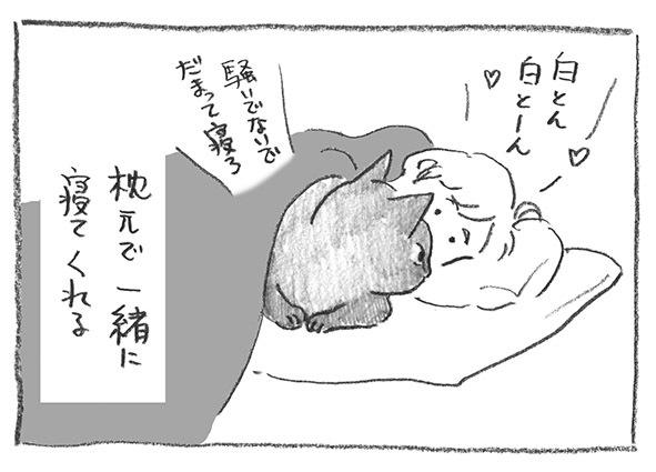 3-0317黙って寝ろ
