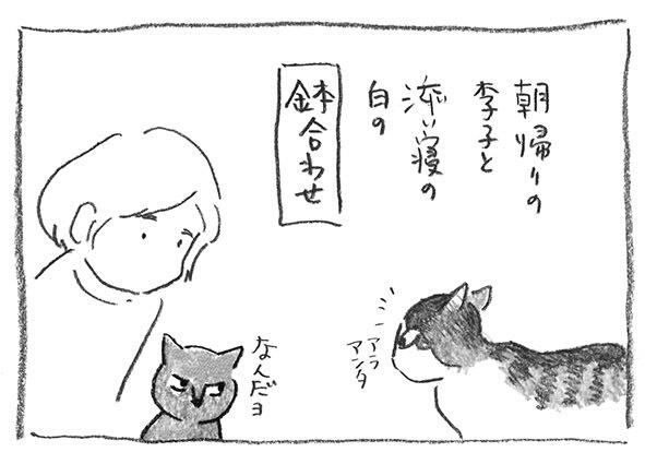 6-0317鉢合わせ