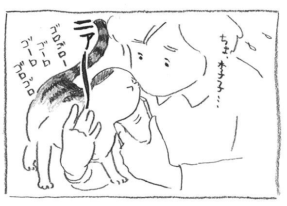 11-0320ちょ、李子