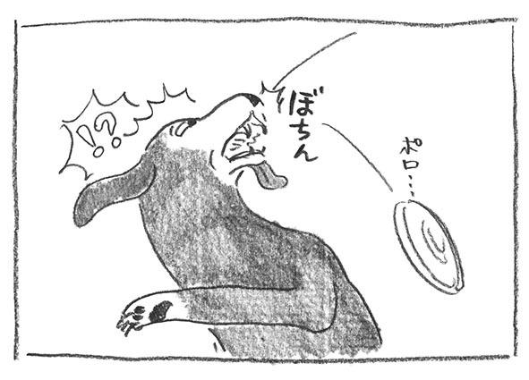 3-0322ぼちん