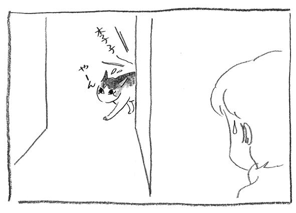 10-0323や〜ん