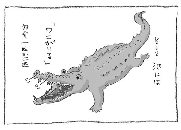 5-0402ワニ