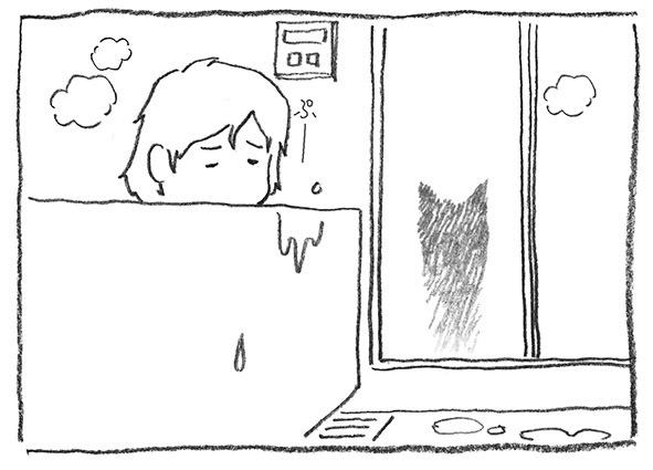 2-0405猫陰