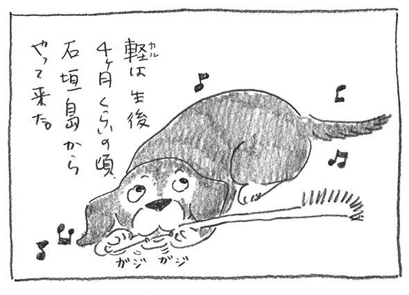 1-0412軽