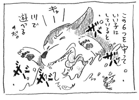 6-0412川遊び