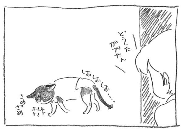 2-0414しおしお