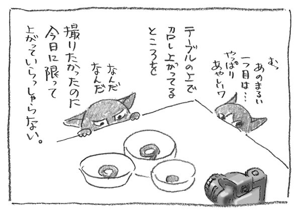 3-0416丸い目