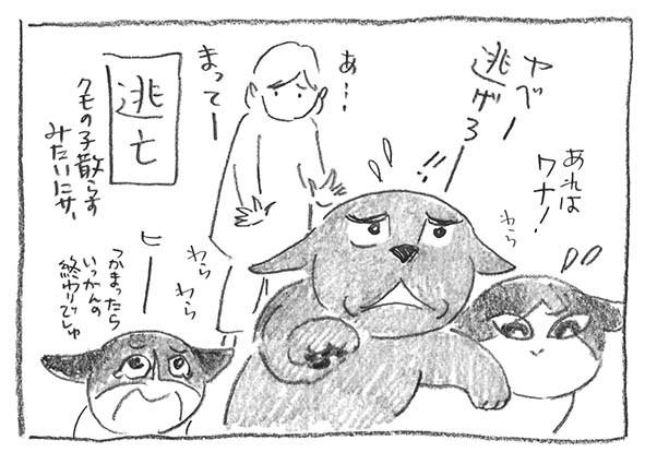 5-0416ヤベー逃げろ