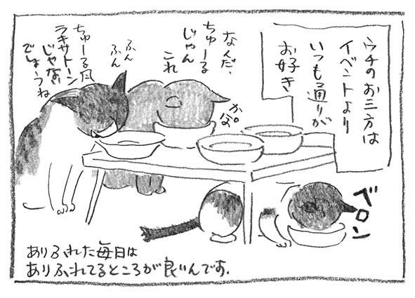 11-0416ちゅーる風
