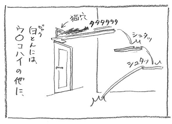 3-0419猫穴に