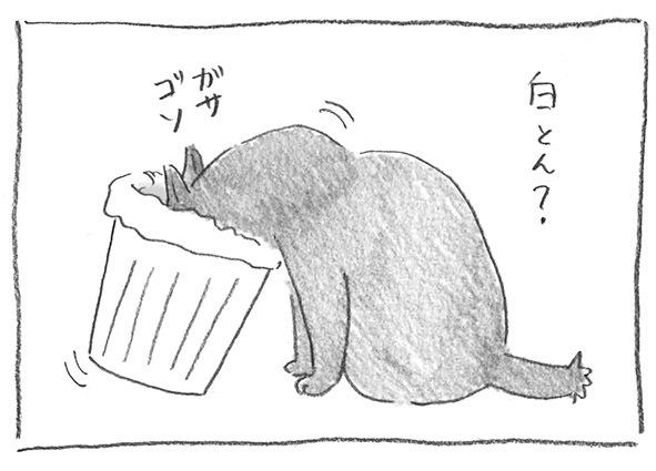 8-0421漁る白