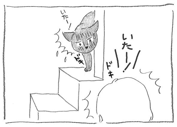 24-0501いた〜!