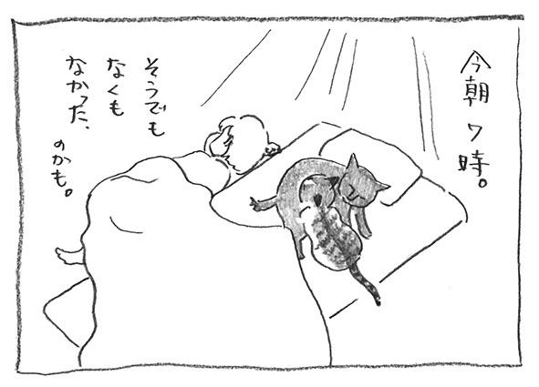 6-0503今朝