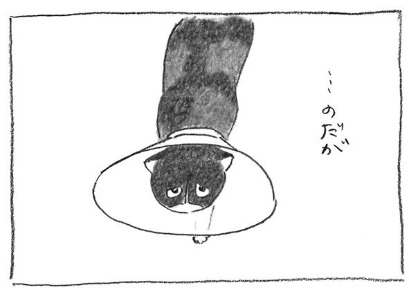 5-0505だが