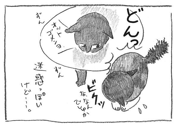 5-0506迷惑っぽい