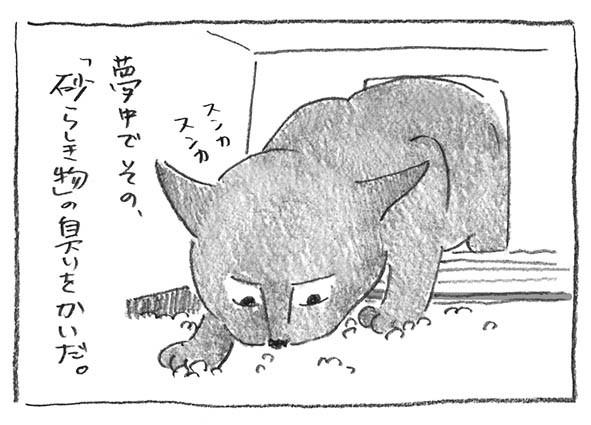 7-0513嗅いだ