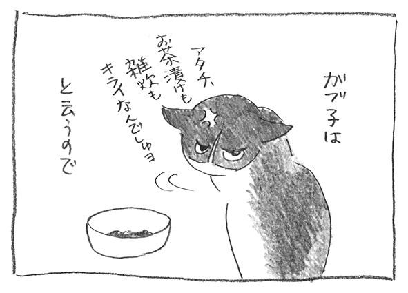 7-0516お茶漬け嫌い