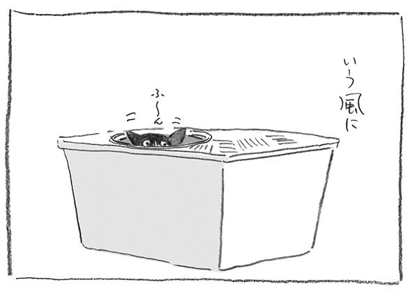 10-0517ふ〜ん