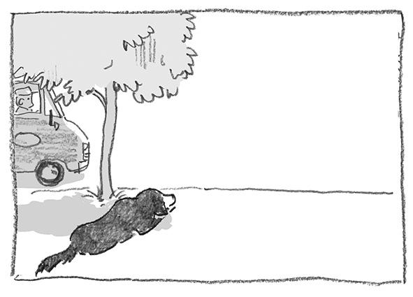 7-0518黒猫にいさん