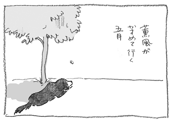 21-0518薫風