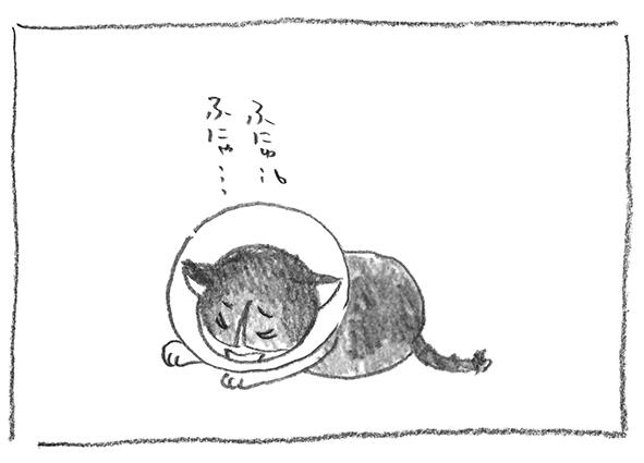 5-0520ガブふにゅ
