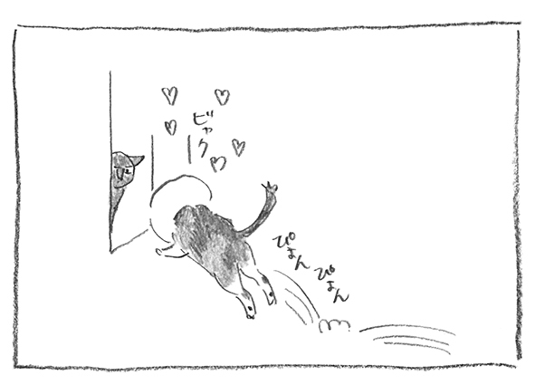 12-0520白みっけ