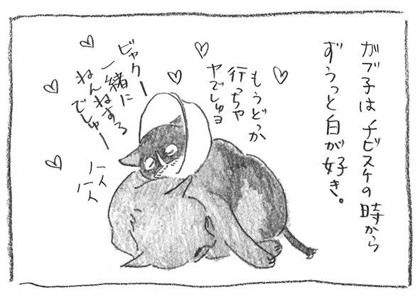 14-0520チビスケ