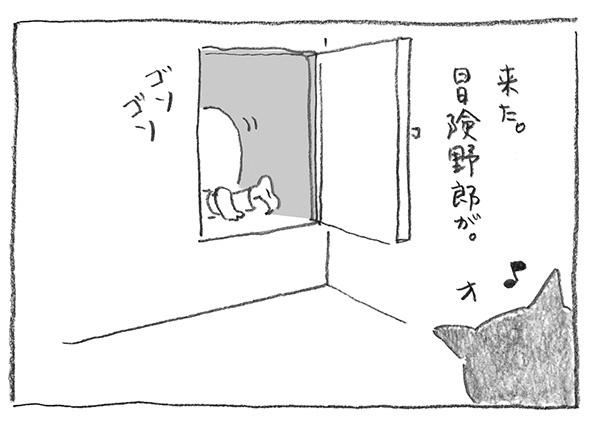 2-0521ゴソゴソ