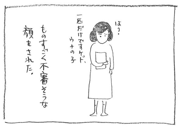 9-0523不審顔