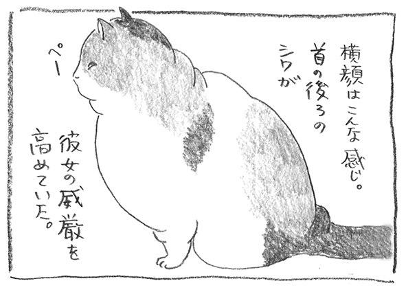 13-0523首の後ろ
