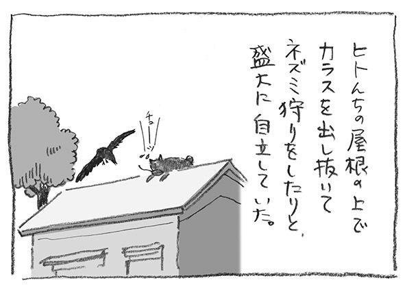 5-0524自立