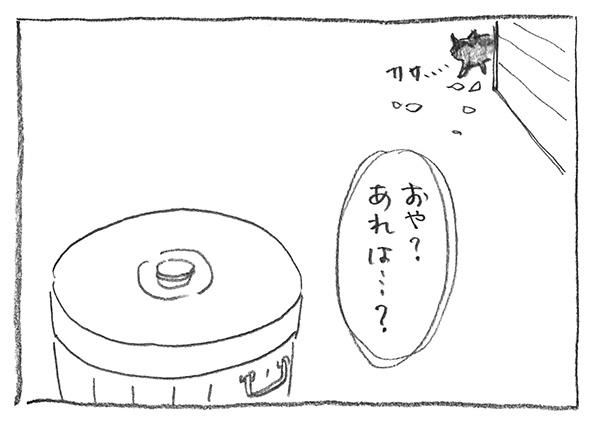 12-0524カサカサ