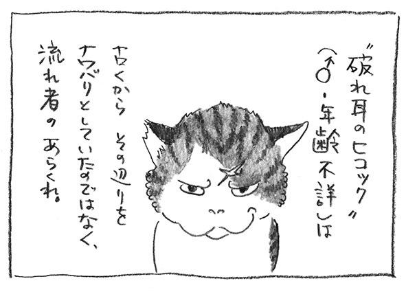 1-0525流れ者