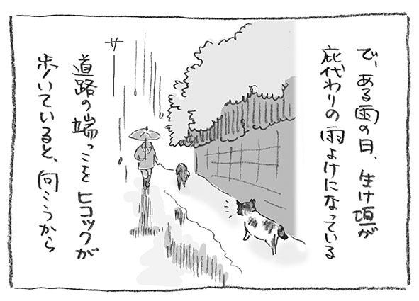 4-0525雨の日