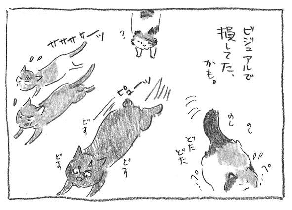12-0525ビジュアル