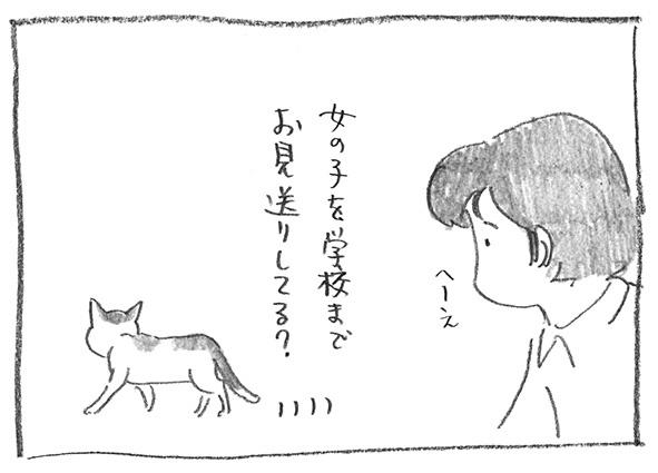 5-0528見送り