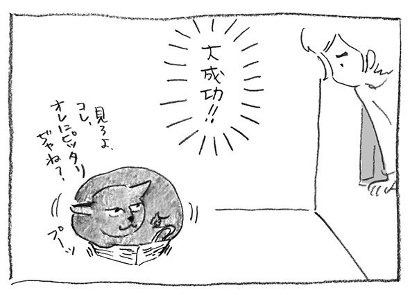 12-0603大成功